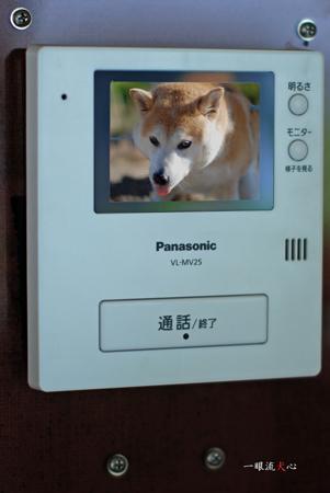 doorphoneG2.jpg